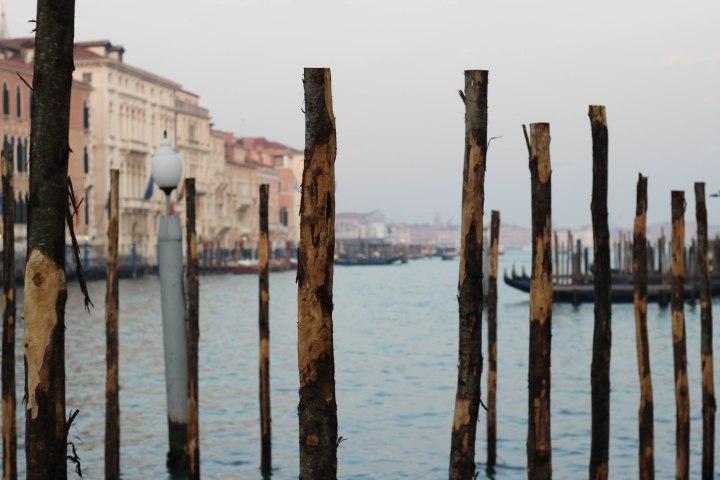 Venedig_Blog_31profil